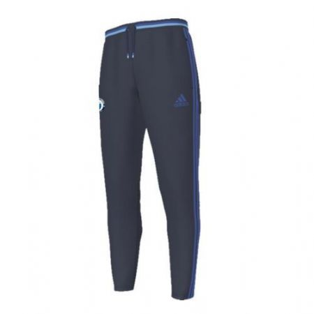 Adidas Training/Technical pants